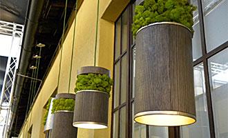 Fabrika Blog Verde Stabilizzato16