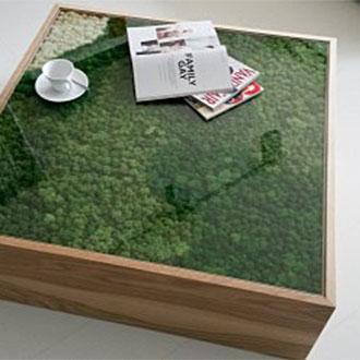 Fabrika Blog Verde Stabilizzato24