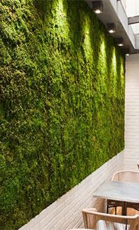 Fabrika Blog Verde Stabilizzato12