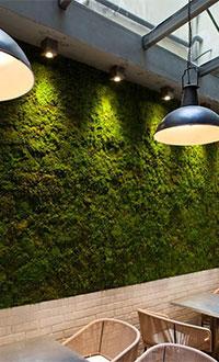 Fabrika Blog Verde Stabilizzato14